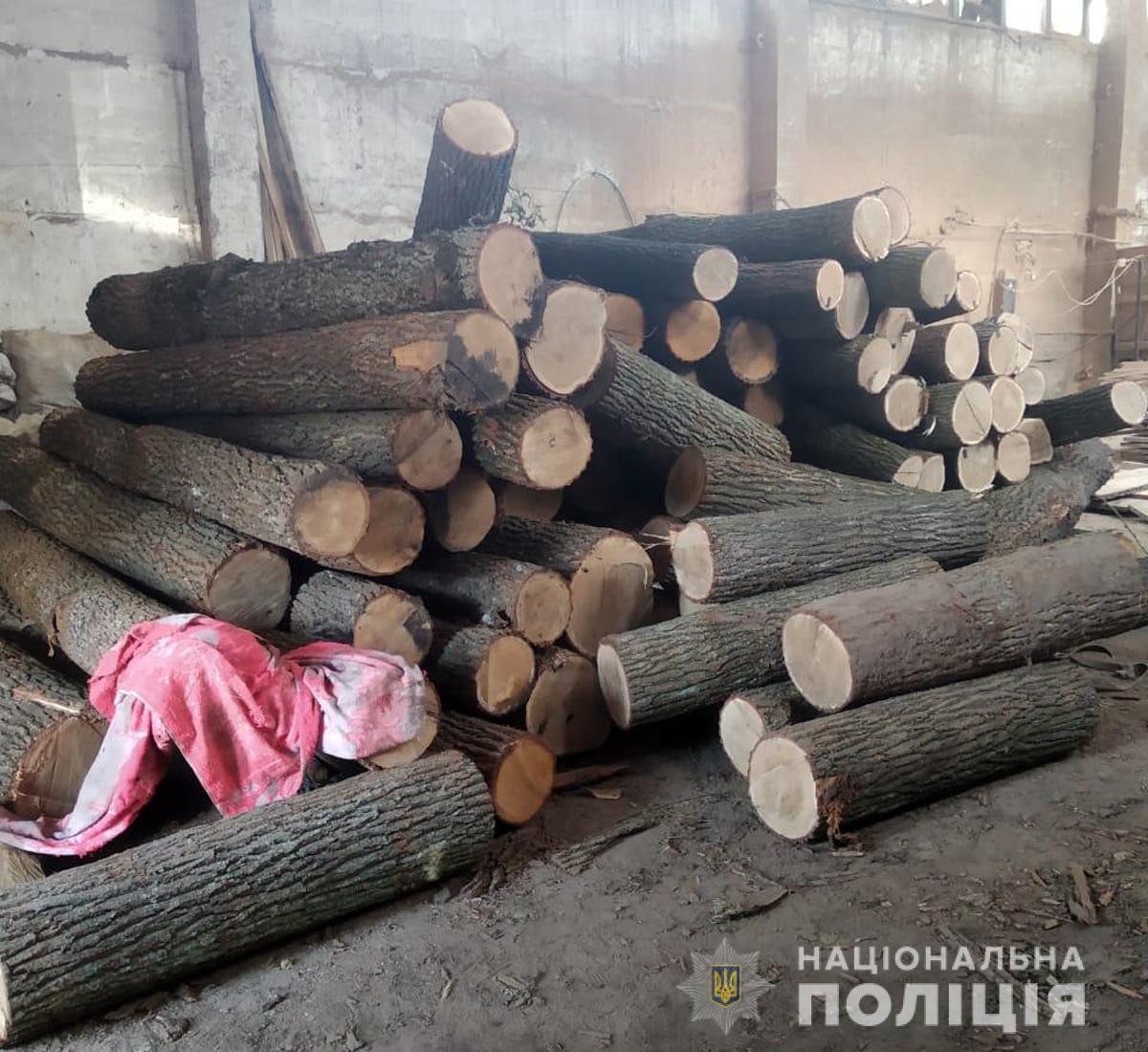На Чуднівщині поліцейські викрили пилораму з необлікованим лісоматеріалом