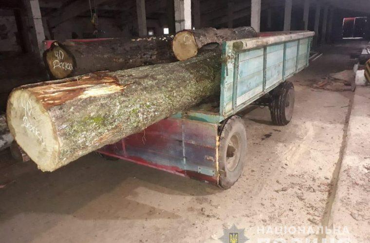На Чуднівщині правоохоронці виявили необліковану деревину