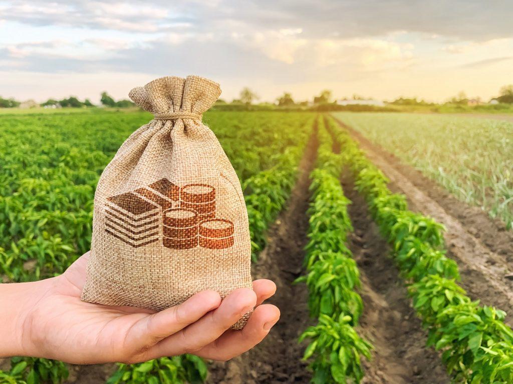 На страхування аграріїв у 2021 році запланували виділити 672 млн грн